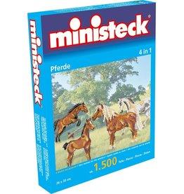 Ministeck Ministeck paarden
