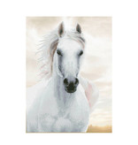 Diamond dotz Diamond dotz imperial stallion