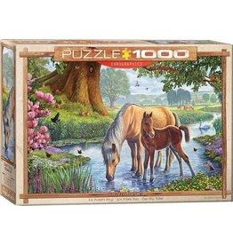 Eurograpics Puzzel 1000 the fell ponies