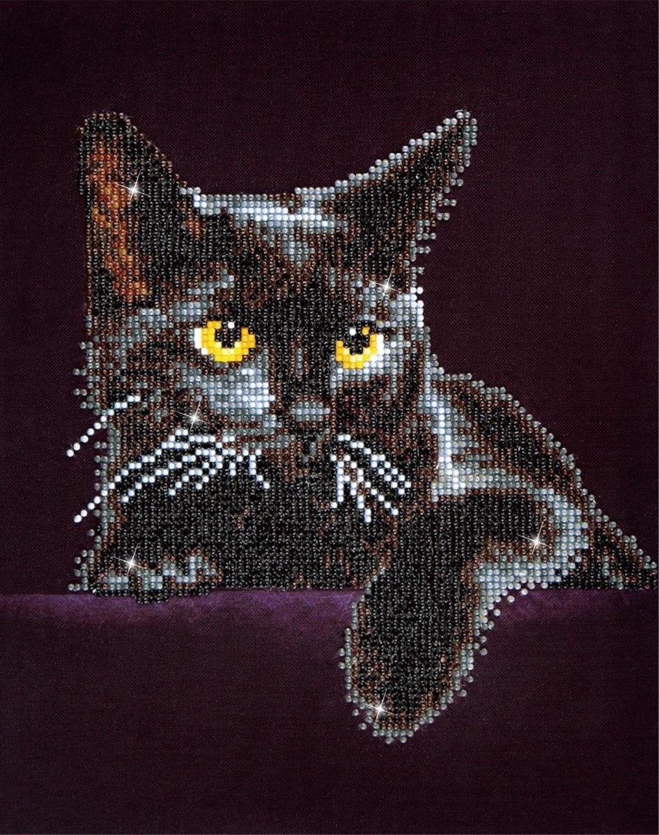 Diamond dotz Daimond dotz kat bij nacht
