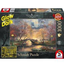 Schmidt Puzzel 1000 autumn central par