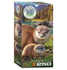 Eurograpics Puzzel 250 otters
