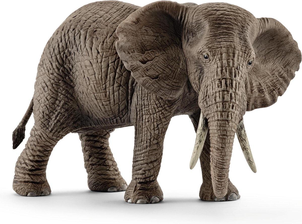 Schleich Dier afrikaanse olifant vrouw
