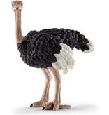 Schleich Dier struisvogel