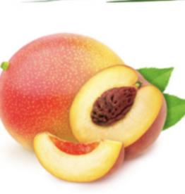 Natuurlijke parfumolie Mango Peach
