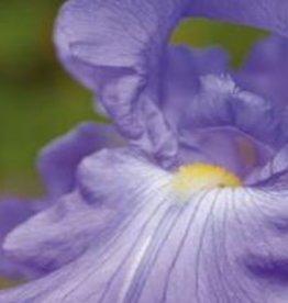 Farfalla Iris 1%, BIO, (99% Alk.) Sel., 5 ml