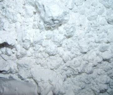 Kiezelaarde (Diatomaceous Earth) 50 gram