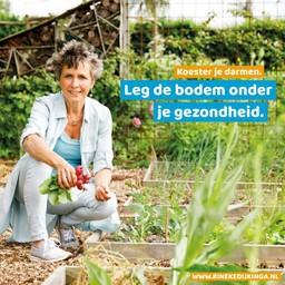 PUUR Rineke Vakantiepakket | gezonde darmen | zonder boek