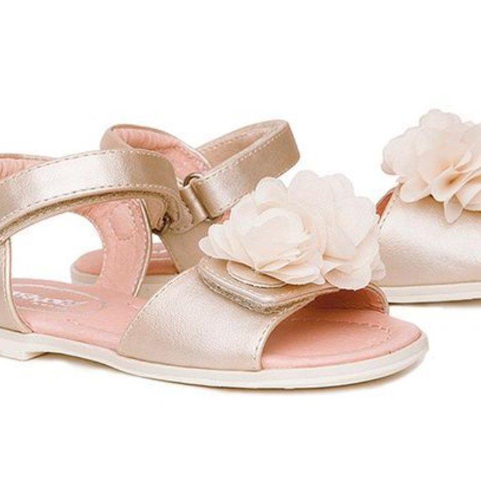 Summer Shoe Girl 20-35