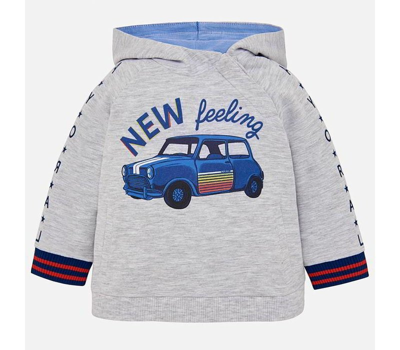 Hoody gray with car