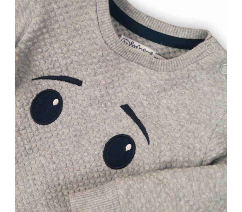 Dirkje grauer Jungenpullover mit Augen