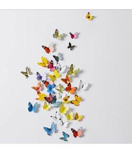 Muursticker mooie gekleurde vlinders 3D