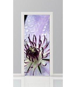 Deursticker bloemen 11