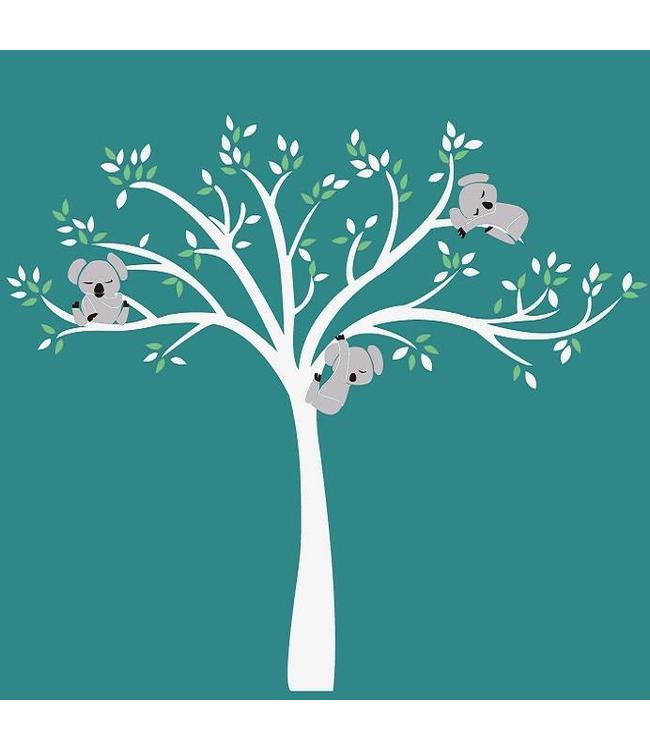 Muursticker witte boom met drie slapende koala beertjes mint groen