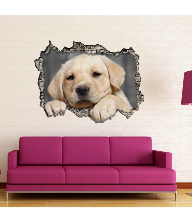 Muursticker lief hondje kijkt door muur