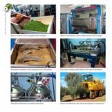 Boeken Alles over olijfolie