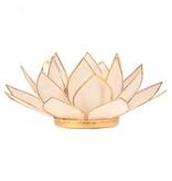 Lotus kaarshouder - wit