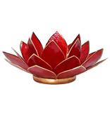 Lotus kaarshouder - rood