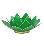 Lotus kaarshouder - groen