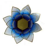 Lotus kaarshouder - wit/blauw (tweekleurig)