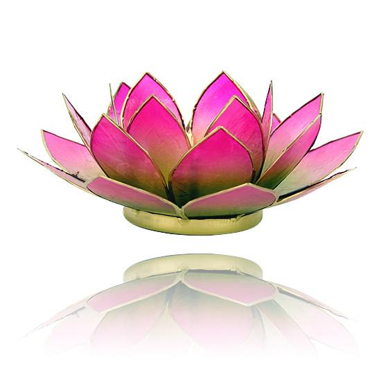 Lotus kaarshouder - groen/roze (tweekleurig)