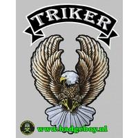 Badgeboy Tiker Eagle Patch set