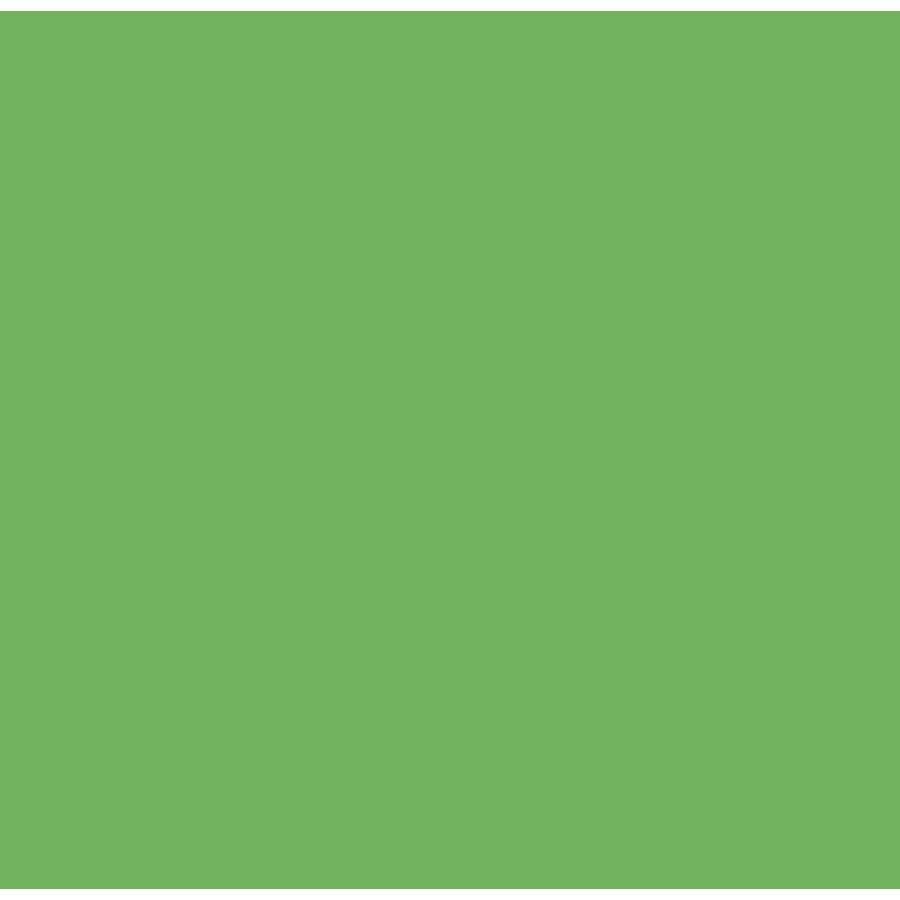 Flex Apple green-1