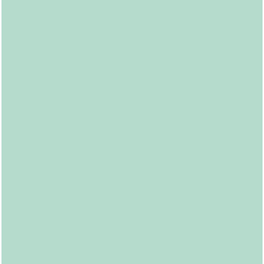 Flex Mint-1