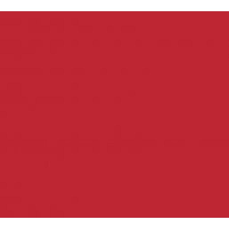 Vinyle rouge foncé (G)-1