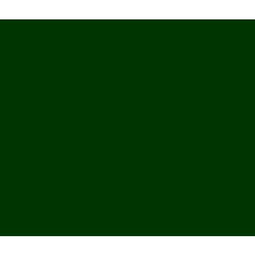 Vinyle Racing Green (G)