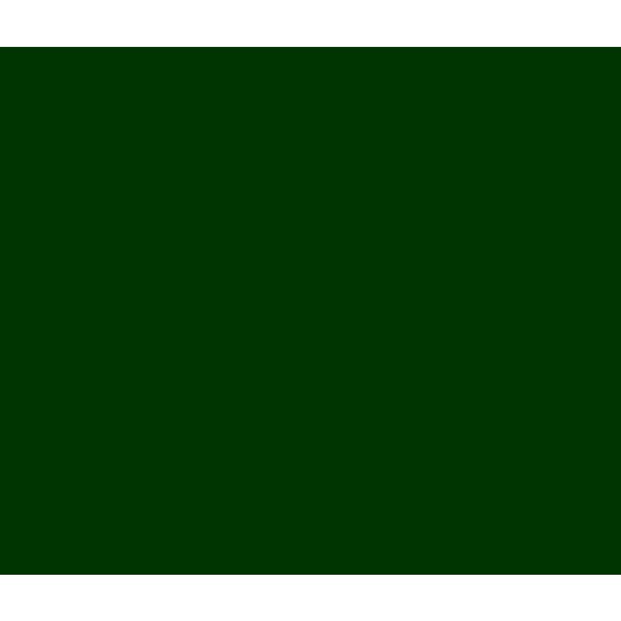 Vinyl Racing Green (G)-1