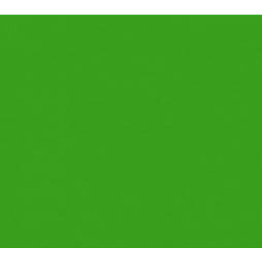 Vert herbe de vinyle (G)-1