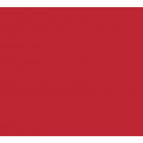 Vinyle rouge foncé (M)
