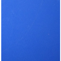 Vinyle bleu brillant (M)