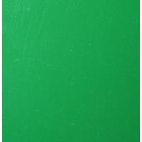 Vinyle vert vif (M)