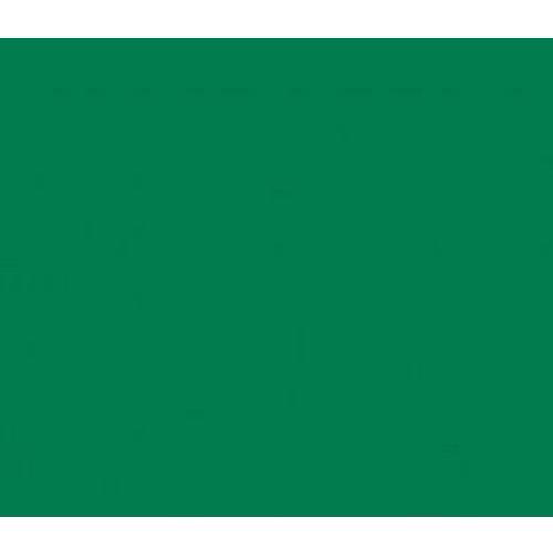 Vinyle vert moyen (M)