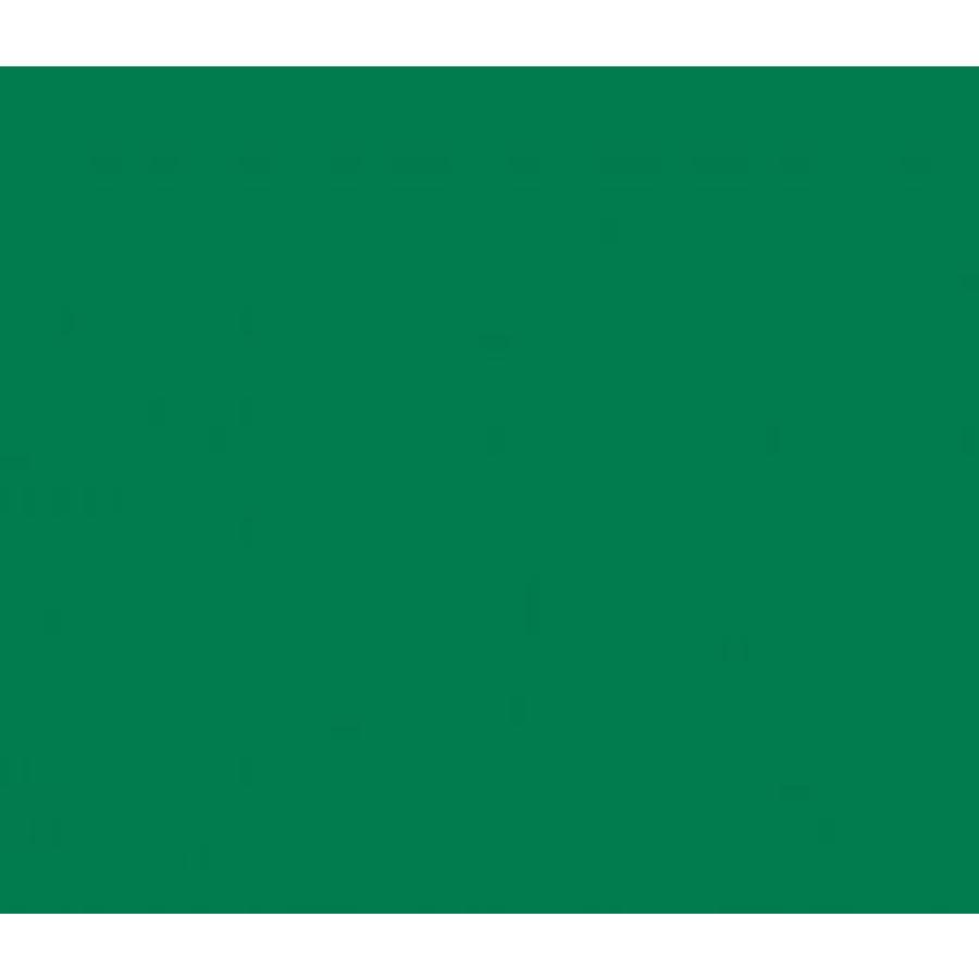 Vinyle vert moyen (M)-1