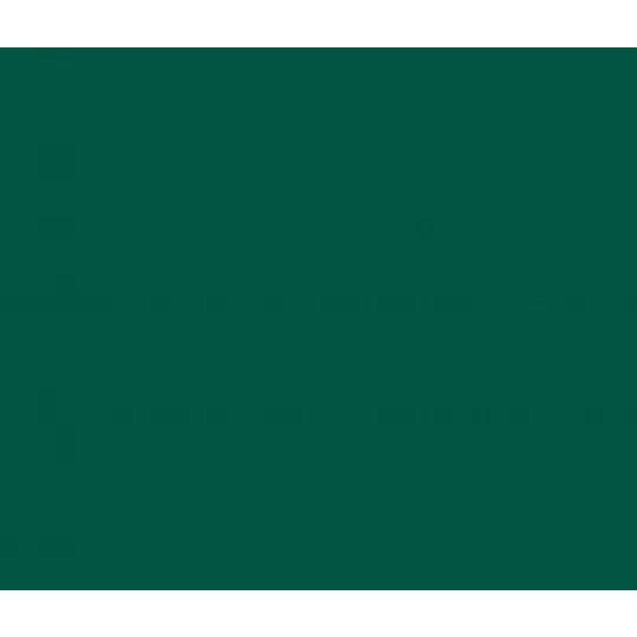 Vinyle vert forêt (M)-1