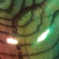 thumb-Vinyl mit holographischem Erscheinungsbild - 30 x 30 cm - Verschiedene Farben-6