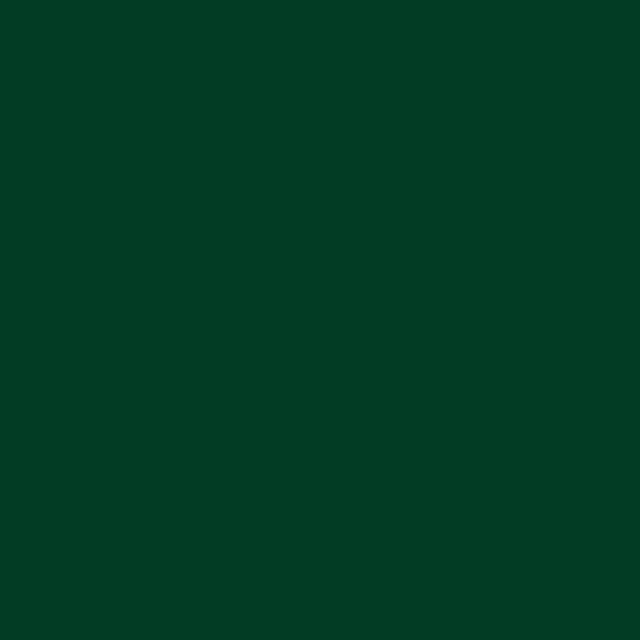 Nylon Flex Dark Green-1