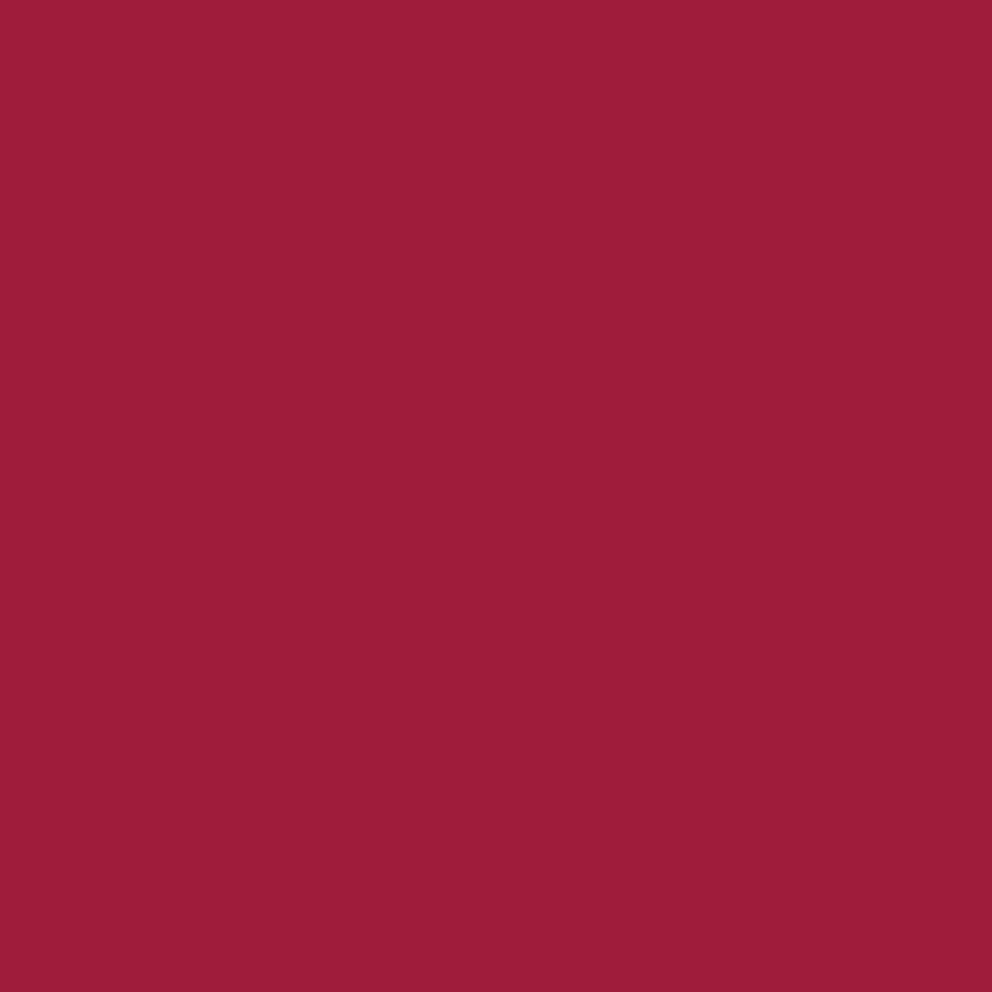 Nylon Flex Burgundy-1