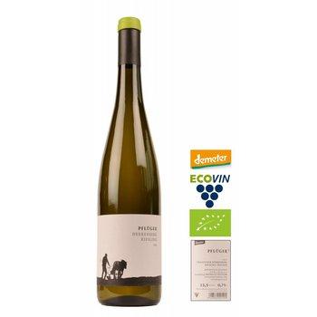 Weingut Pflüger 2015 BIO Herrenberg Riesling Trocken