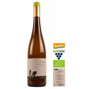 Weingut Pflüger 2014 Michelsberg Riesling Trocken Alte Reben