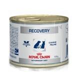 Royal Canin Royal Canin Recovery Hond/kat  12x195g