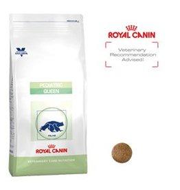 Royal Canin Royal Canin Pediatric Queen 4kg