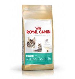 Royal Canin Royal Canin Maine Coon Kitten 4 kg