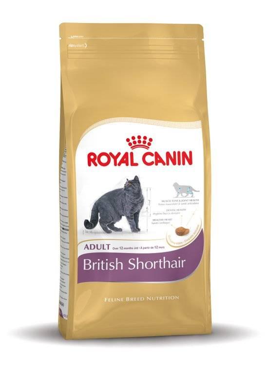 Royal Canin Royal Canin British Shorthair 500 g