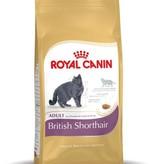 Royal Canin Royal Canin British Shorthair 4 kg
