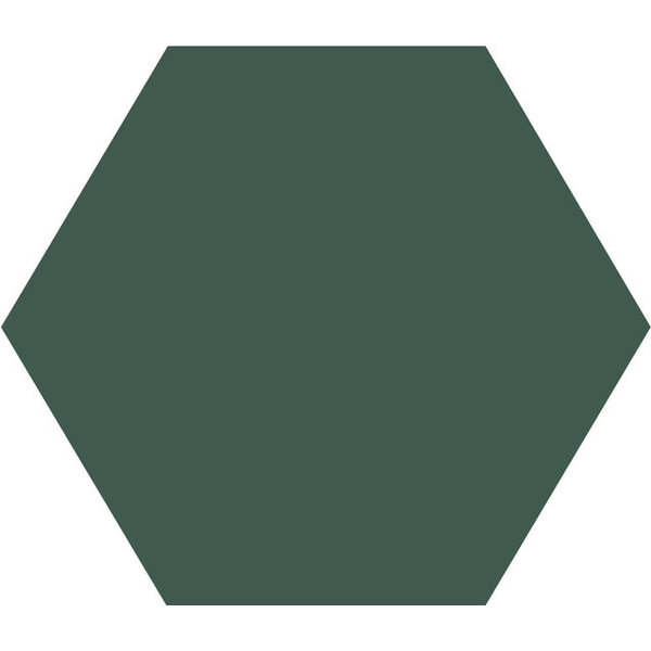 Winckelmans Hexagon 10X10 cm vert fonce, afname per doos van 0,42 m²