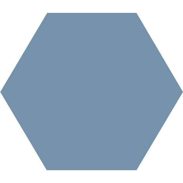 Winckelmans Hexagon 10X10 cm bleu, afname per doos van 0,42 m²